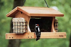 hopper feeder with suet feeders