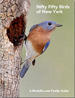 50 common New York birds