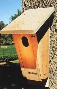 Peterson style bluebird box