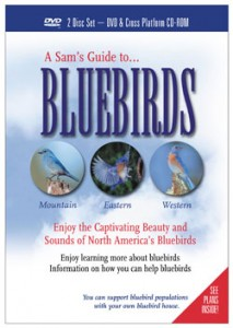 Sam's guides to bluebirds