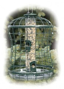 tube feeder in a cage